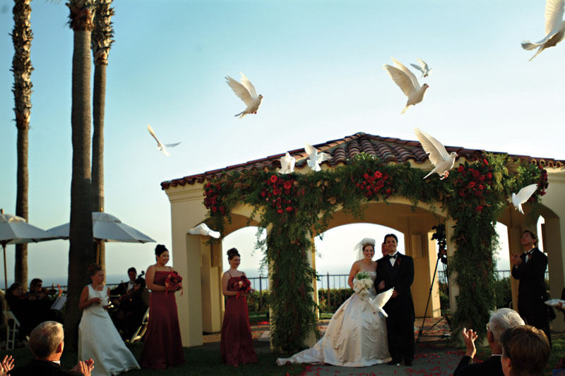 White Dove Release at Ritz Carlton, California. Photo by Tony Bisson